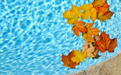 Enjoy your pool patio this fall