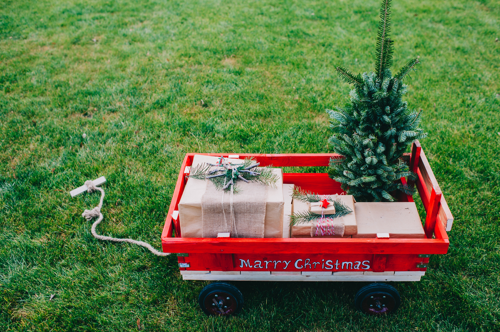 How to decorate the backyard for the holidays